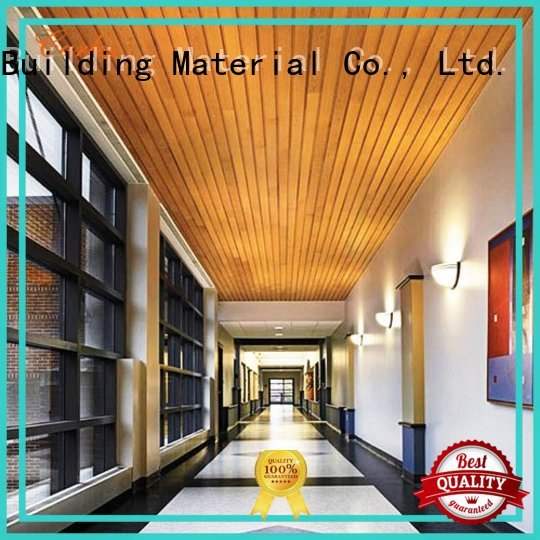 Quality Carlos Brand perforated metal ceiling tiles suppliers ceiling