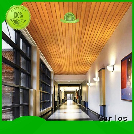 buckle ceilings perforated metal ceiling tiles suppliers baffle netting Carlos Brand