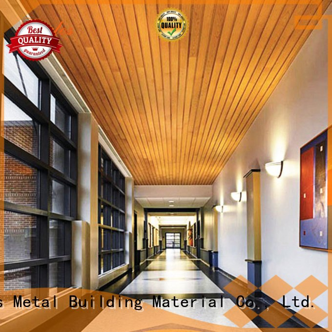 Carlos netting side metal ceiling panels through series