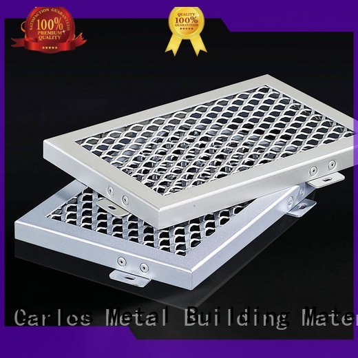 Custom series metal ceiling panels ceiling Carlos